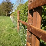 Creosote Stock Fence