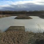 Pond12Months